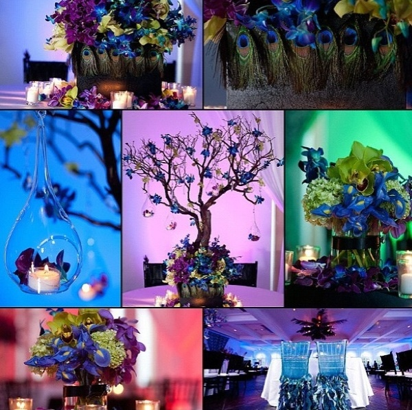 Peacock centerpieces and set-up