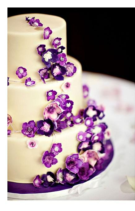 izzy cakes